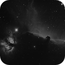 IC 434 e dintorni ,                                Ric