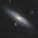 M31  - firstlight,                                Claus Steindl