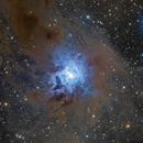 NGC 7023,                                Daniel Nimmervoll