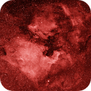 North America and Pelican Nebulae - NGC 7000 and IC 5070,                                Johannes D. Clausen