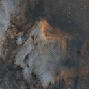 IC5070_Pelican Nebula_SHO,                                Bernard DELATTRE