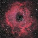 Rosette Nebula,                                Steve Gallenson