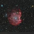 NGC 2174 - Monkey Head Nebula,                                pirx13