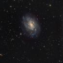 NGC 300:  A Spiral Galaxy in Sculptor Constellation  =REV.4=,                                Fernando