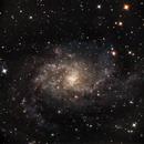 M33 - Triangulum Galaxy,                                Michael Lewis