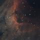 Pelican Nebula,                                Josh Van