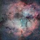 IC 1396 Mosaic,                                Loran Hughes
