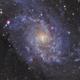 M33,                                  paddy36