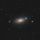 M63 - The Sunflower Galaxy,                                Andrea Alessandrelli
