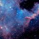 North America Nebula,                                Derek Foster