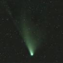 Goodbye Comet Neowise,                                Kurt Zeppetello