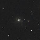 NGC 3310,                                adrian-HG