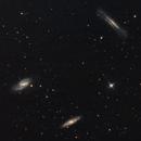 M65 M66 NGC3628 - Leo Triplet,                                Matteo Ambrosi
