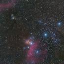 Orion's Belt, IC434 & M78,                                Yuji Nakashima