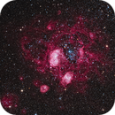 NGC1763, A Christmas Rose in LRHaGB,                                TWFowler