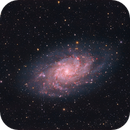 M33,                                ggkids