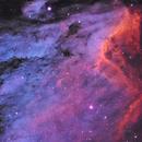 IC-5067 (Pelican Nebula),                                Joel Shepherd