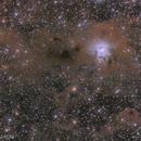 NGC 7023 / The Iris Nebula (LRGB),                                  brent1123