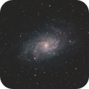 M33: ZWO ASI294MM-PRO,                                Andrew Burwell