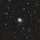 M101 RedCat WideField,                                Bob J