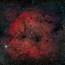 Elephant Trunk Nebula,                                Rick Gaps