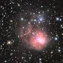 NGC1931 Fly Nebula,                                Paul