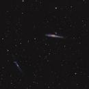 The Whale Galaxy (NGC 4631),                                Joseph Buchanan