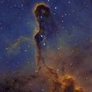 IC1396 Bicolor,                                Erik Guneriussen