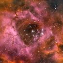 Rosette Nebula,                                Mo Tabbara