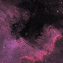 NGC 7000,                                Pete Bouras