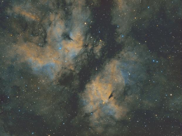 Butterfly Nebula,                                  Andrew Burwell