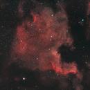 North America and Pelican Nebula,                                Rob Arkins
