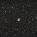 M1 - The Crab Nebula,                                Luxor