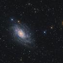 NGC 2403,                                Marcel Drechsler