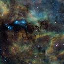 NGC6914 REALISEE PAR NEW ASTRO,                                GUEYRAUD Stéphane