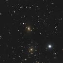 Coma Galaxy Cluster,                                Benjamin Law