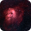 IC410 - The tedpoles nebula,                                  Jean-Marie MESSINA