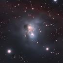 NGC 1788 - vdB 33,                                Gary Imm