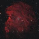 Monkey Head nebula in HaRGB,                                Mark