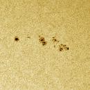 Sunspot AR 2692,                                Lorenzo Palloni