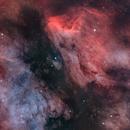 The North America Nebula and Pelican Nebula.,                                Henrique Silva