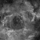 Heart of the Rosette Nebula,                                Roland Christen