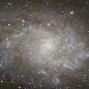 M33 - pinwheel indeed,                                  lowenthalm