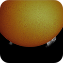 Sun with Prominences,                                RonAdams