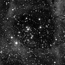 NGC2239,                                Jean-Michel Hirschi