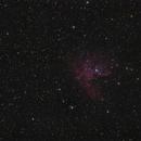 NGC 281 - Pacman Nebula - Second Light ASI 1600 MM Pro,                                Frank Schmitz