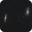 M66 and M65,                                TimothyTim