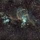 The Statue of Liberty Nebula,                                Geoff