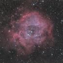Rosette Nebula,                                Ken-ichiro Tanaka