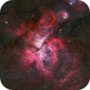 The Great Carina Nebula,                                Wei-Hao Wang